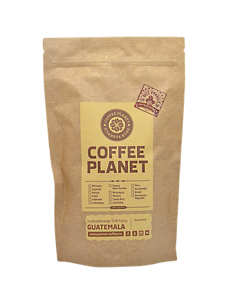 Coffee arabica plant uk