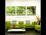 Картина по номерам Зеленое дерево (триптих)