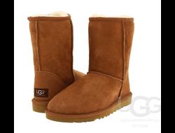 UGG® CLASSIC SHORT - Классические угги (от 229$)