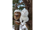 cats-with-hats-3.jpg