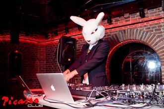 Dj Mad Rabbit