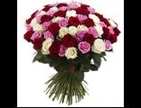101 роза микс белая/розовая/красная