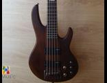 ESP LTD D-5 A