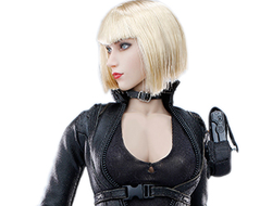ПРЕДЗАКАЗ - Коллекционная фигурка 1/6 Cross Fire - Mandala The Protector Action Figure (VC-CF-02) - VERYCOOL