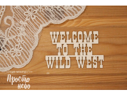 Welcome to the wild west