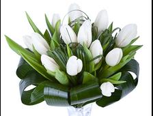 Твои любимые тюльпаны