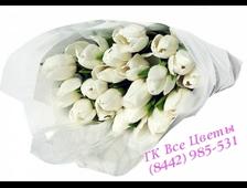 Букет из 23 белых Тюльпанов