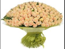 303 кремовые розы 80 см.