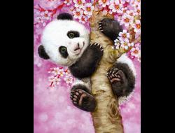 Картина (раскраска) по номерам на холсте - Милая панда EX 5191