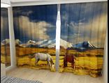 Лошади на Альпийском лугу