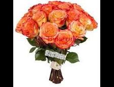 Элитные рыжые розы (15 роз)