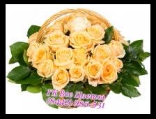 Корзина из 33 нежных роз