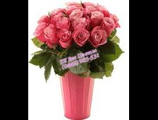 Ведерко роз (25 розовых роз)