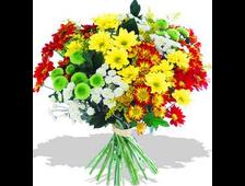 Хризантемный Микс цветов