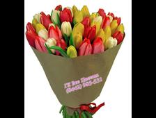 25 алых Тюльпанов букет Алый