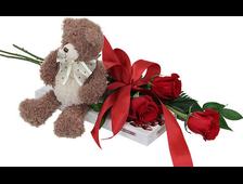 Набор Тебе: плюшевый Мишка, 3 красных розы и конфеты RAFFAELLO 240 грамм