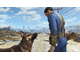 Диск Sony Playstation 4 Fallout 4