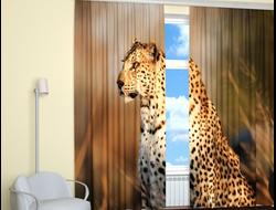 Фотошторы с леопардом: Смотритель