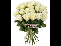 21 белая роза букетом