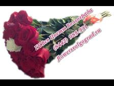 Сердце Ты Мое (23 розы голландия 1 метр длина)