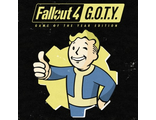 Fallout 4: Game of the Year Edition (цифр версия PS4) RUS
