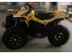 Can-am BPR Renegade 2007 2008 [355]