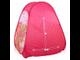 Детская игровая палатка Disney Winx