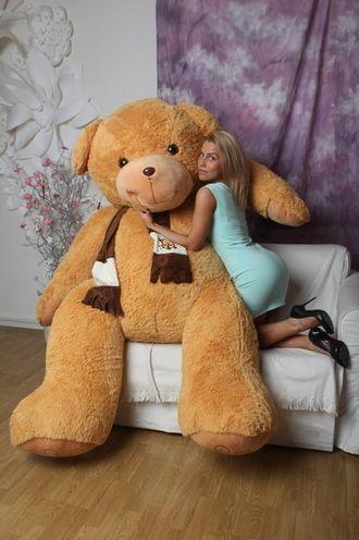 """Самый большой плюшевый медведь """"Доминик"""" 250 см."""
