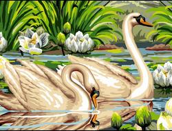 Картина (раскраска) по номерам на холсте - Лебеди в лотосах EX 5288