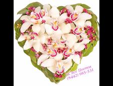 Сердце из цветов Орхидеи
