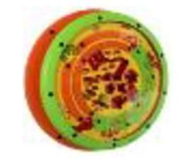 Игровой модуль Spinball Green с платой Wall Plate Green (Лабиринт)