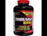 Повышение тестостерона (трибулус)