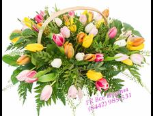 Разноцветные Тюльпаны в корзине к празднику