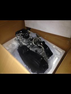 Двигатель в сборе РЫСЬ 400, 763539