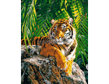 Картина по номерам Суматранская тигрица, худ. Девид Страйблинг