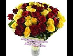 23 розы алые и желтые букетом Огонь и пламя