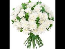 кустовая хризантема букет