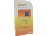 Microsoft Office 2010 Professional Microcase NO DVD