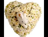 Сердце из роз и орхидей с мягкой игрушкой