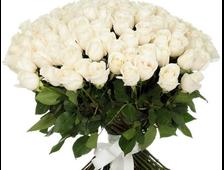 101 Голландская роза 90-100 см.