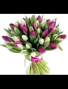 Букет 39 тюльпанов