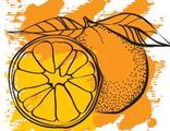 """Эфирное масло """"Апельсин сладкий"""", 5 мл (Ми&Ко)"""