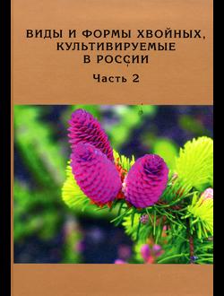 Виды и формы хвойных, культивируемые в России. Часть 2. Picea A.Dietr., Thuja L.