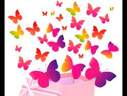 Салют из живых бабочек (любое количество)