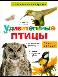 Петр Волцит: Удивительные птицы