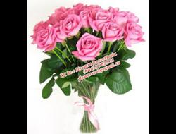 11 ярких розовых роз