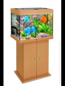 Аквариум Biodesign Риф 100 (без подставки)
