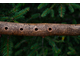 Native American  style flute in F 432 HZ