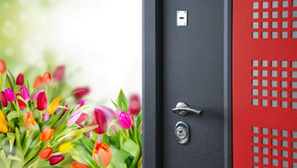 Входные двери Персона со скидкой