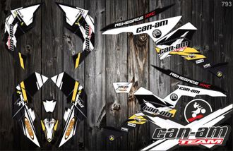 Can-am BPR Renegade #793